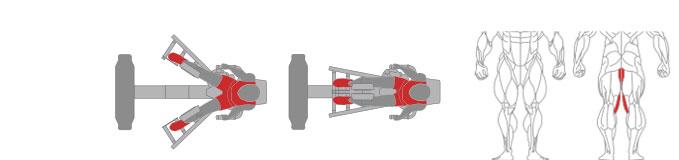 Máy ép đùi trong Plus X J200 - 14
