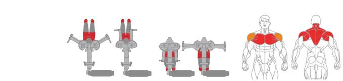 Máy ép ngực/vai sau Plus X J300 - 15