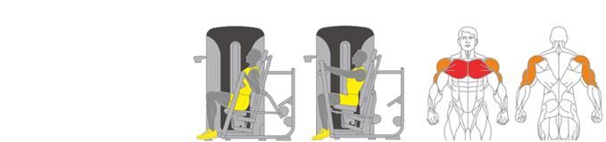 Máy đẩy ngực Plus X J400 - 01