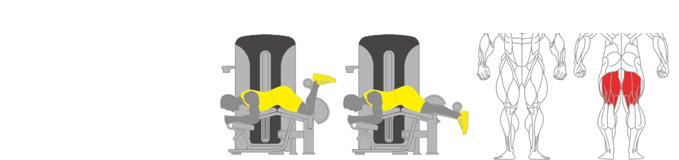 Máy nằm móc đùi sau Plus X J400 - 20