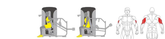 Máy tập tay sau Plus X J400 - 06