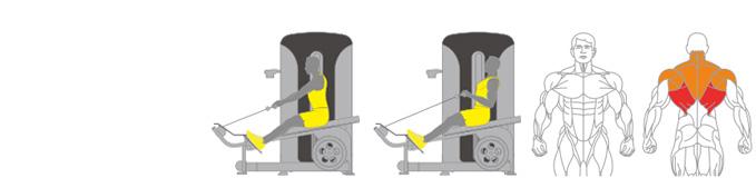 Máy xô thấp Plus X J400 - 17