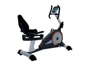 Xe đạp tập thể dục P97R